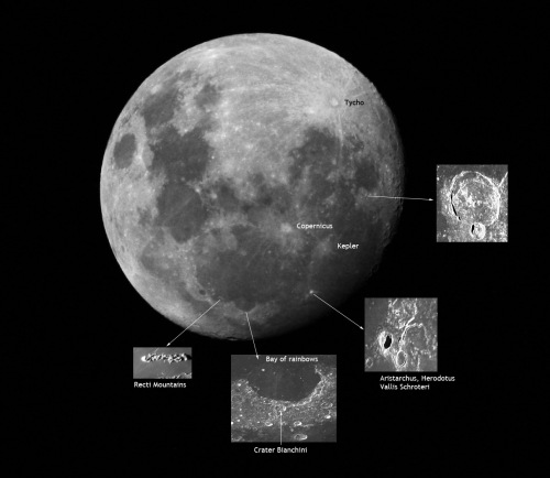 Some features of the Moon